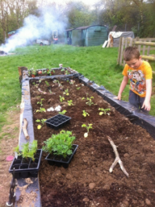 Then compost was added and the children did all the planting.